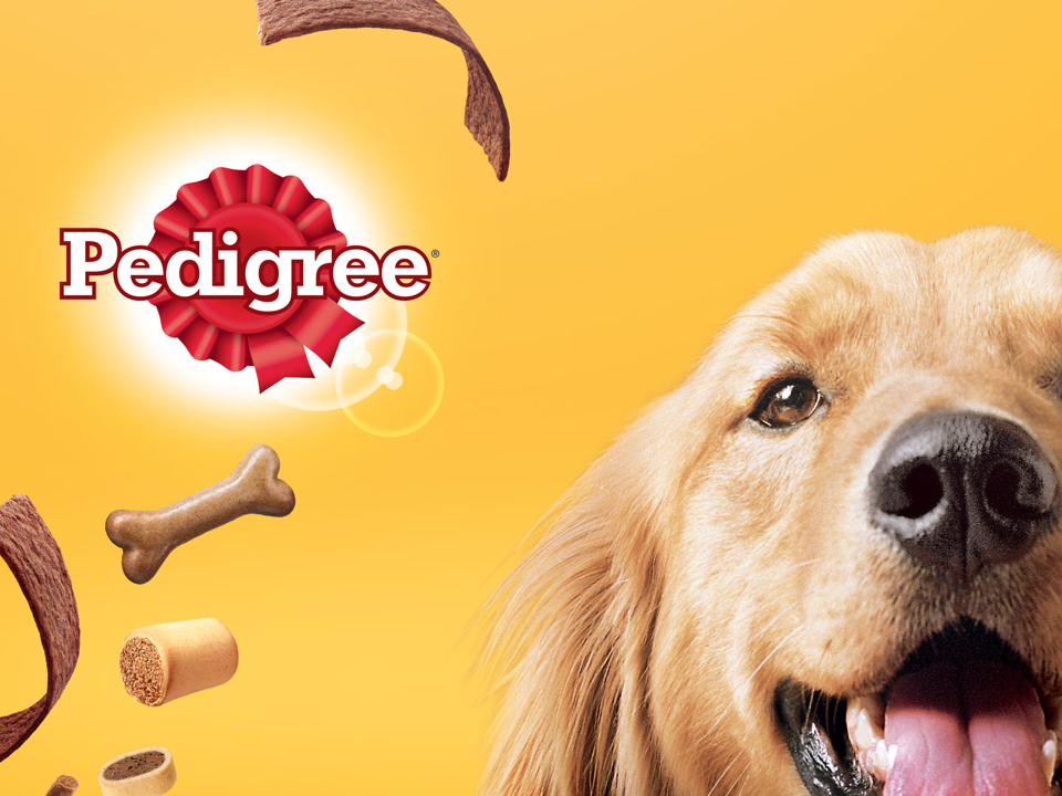 Pedigree - Successful transformation