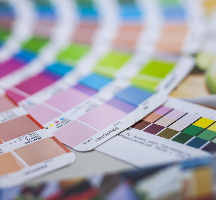 visuel représentant des palettes de couleurs #branding